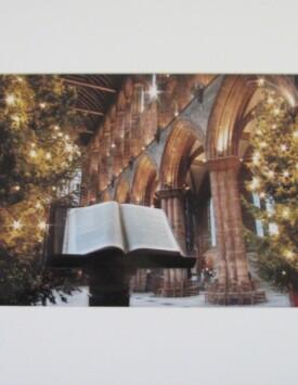 'Xmas Cathedral'
